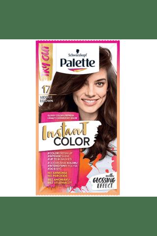 Plaukų dažomasis želė PALETTE nr.17
