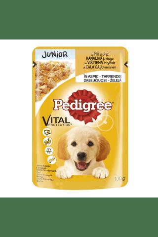 Visavertis ėdalas augantiems šuniukams su vištiena drebučiuose PEDIGREE JUNIOR, 100 g