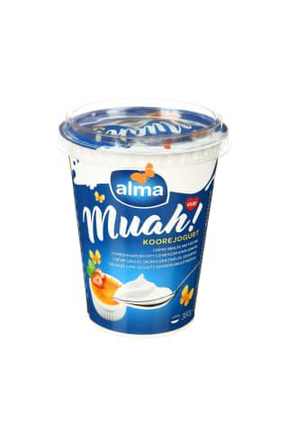 CREME briulee skonio grietinėlės jogurtas, 380 g