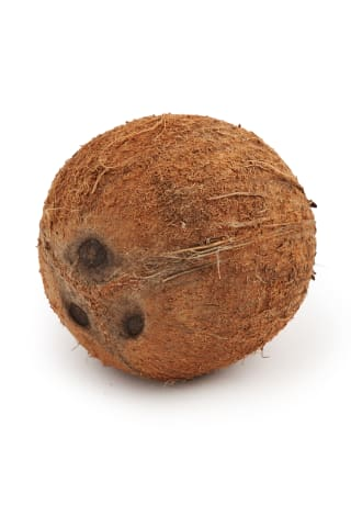 Kokosrieksts, gab