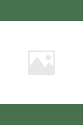 Kivių skonio grietininiai valgomieji ledai su kivių ir kriaušių įdaru vafliniame puodelyje DADU, 120 ml